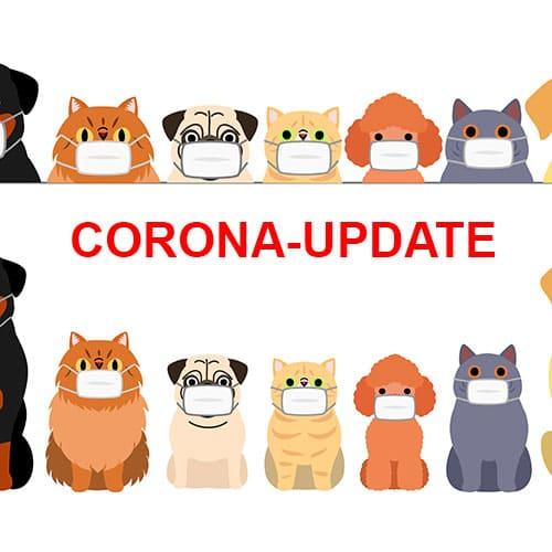 Update: Corona-Virus bei Haustieren